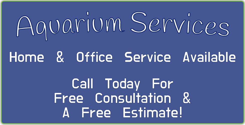 Aquarium Services Home and Office Service Available Call Today For Free Consultation and a free quote
